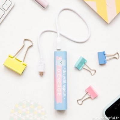 "Mr Wonderful PowerBank ""Un..."